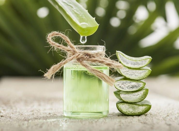 Oleskan gel lidah buaya untuk mencegah kulit menjadi gelap (Foto: Shutterstock)